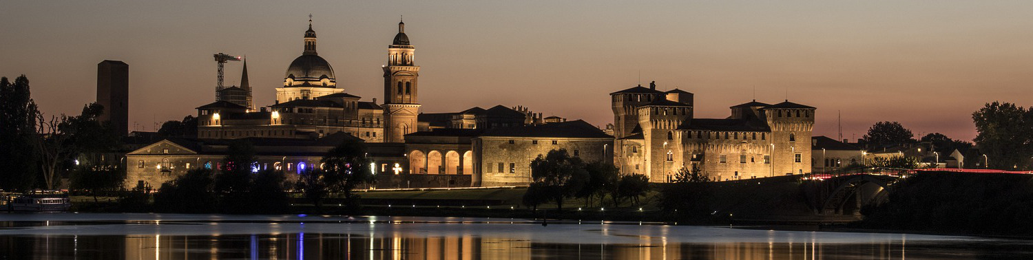 The city of Mantua